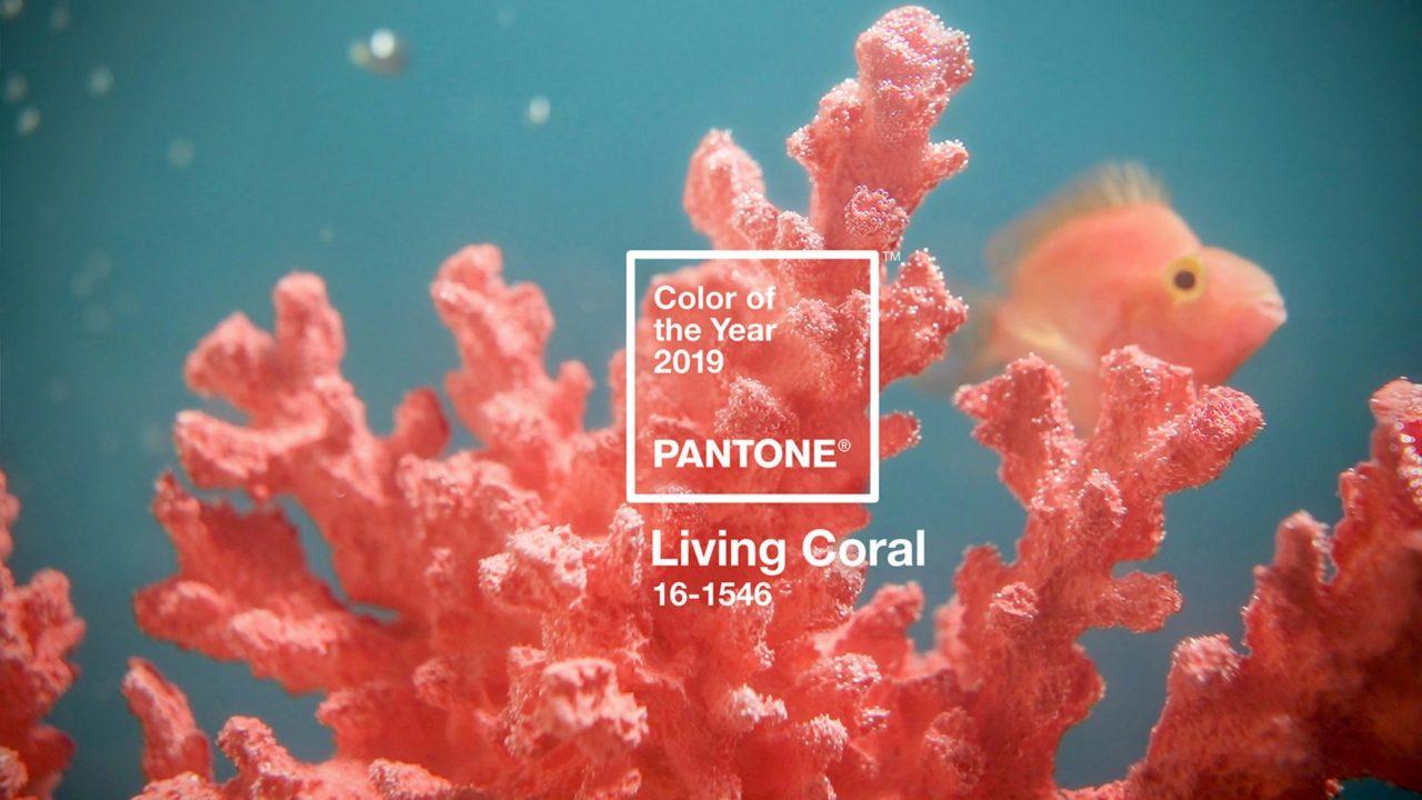 Колір, пантон 2019 року - живий корал