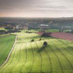 Плодородие земель