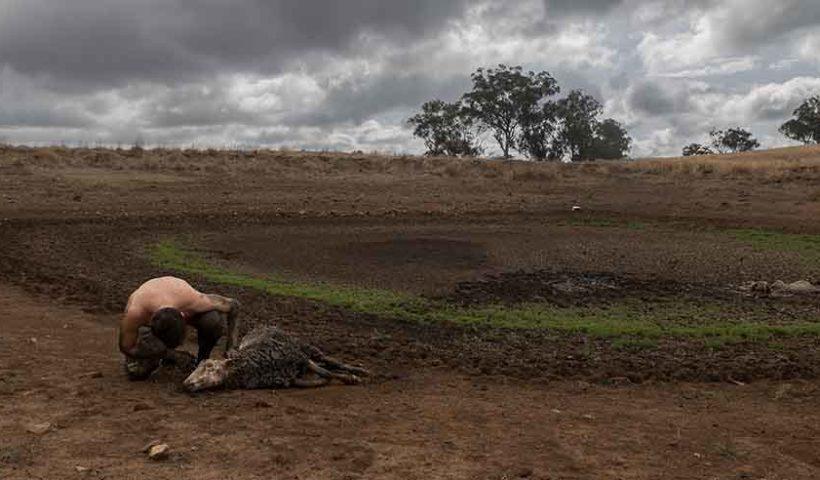 Последствия климатических изменений