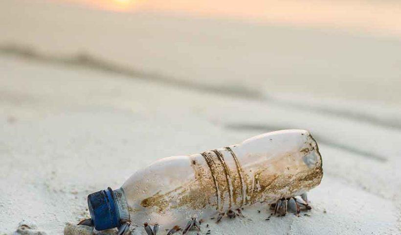 Пластиковая бутылка на берегу