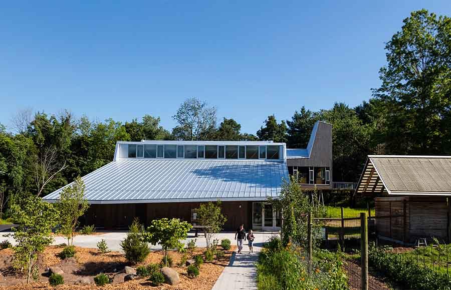 эко-школа в Коннектикуте