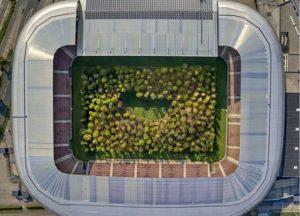 лес на стадионе в Австрии