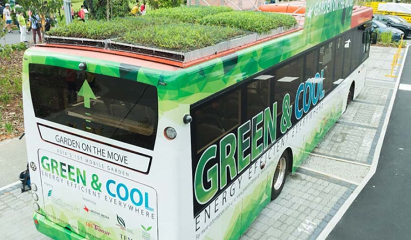 автобус с травой на крыше